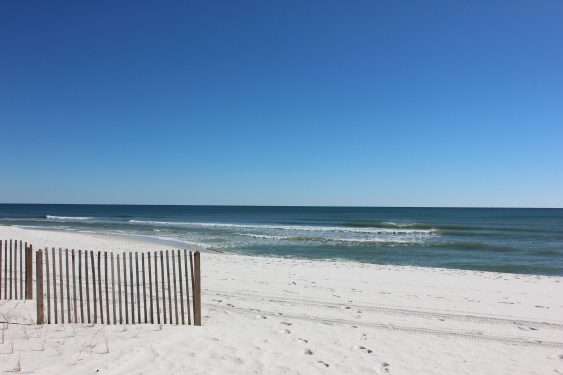 Thursday Afternoon Beach and Surf Report 01/31/13