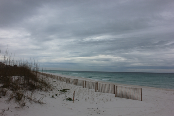 Sunday Afternoon Beach and Surf Report 01/06/13