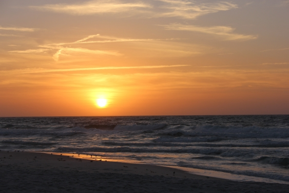 Tuesday Sunrise Beach and Surf Report 01/01/13