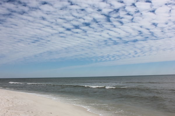 Thursday Afternoon Beach and Surf Report 02/28/13