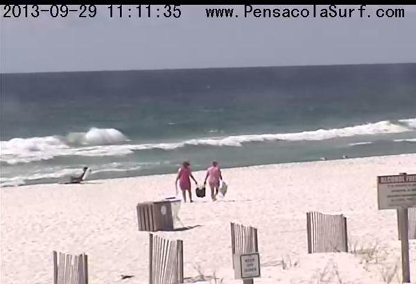 Sunday Midday Beach and Surf Report 09/29/13 11:05 pm