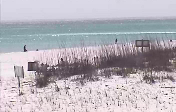 Tuesday Afternoon Beach and Surf Report 03/25/14