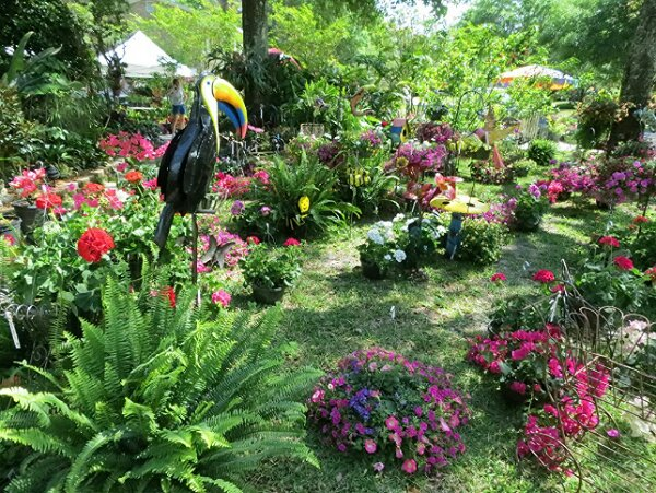Pensacola Garden Club Plant Sale Today and Saturday!!!