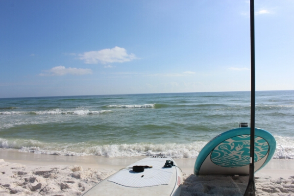 Saturday Midday Beach and Surf Report 12/06/14