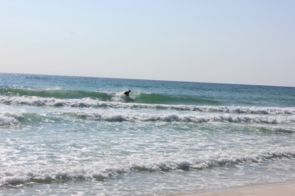 Tuesday Midday Beach and Surf Report 12/16/14