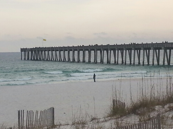 New Year's Day Beach and Surf Report 01/01/15