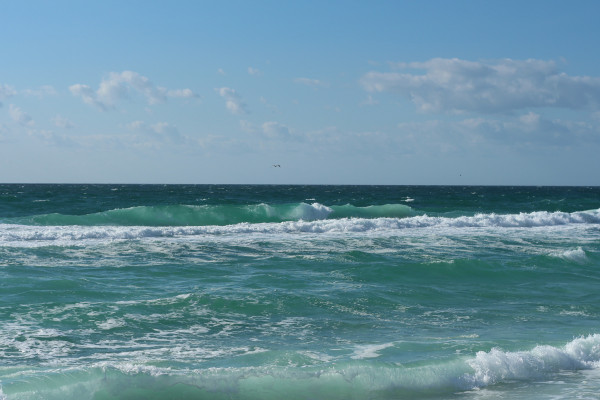 Monday Mid-Morning Surf Report 11/28/2016
